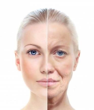 Veido senėjimo anatomija
